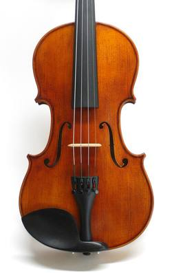 AS20 Full size Violin